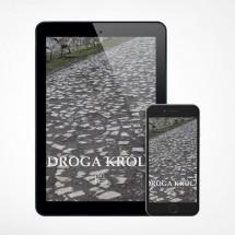 E-book - Droga Króla