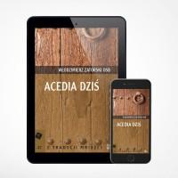 E-book - Acedia dziś