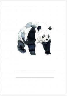 Panda Petronela / Zeszyt A5 16-kartkowy
